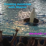 Our Time At AdventureCon14 in SeaWorld San Antonio