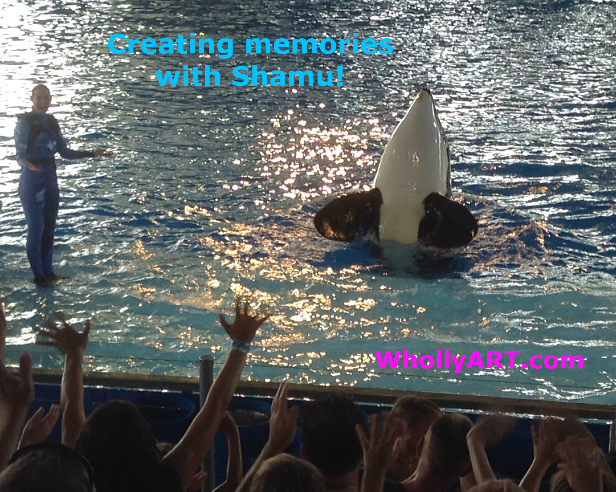 Our Time At AdventureCon14 in SeaWorld San Antonio