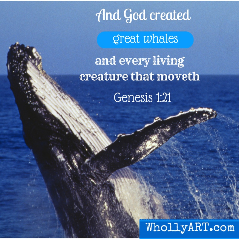 Why whales are important and essential to nature ~ Elyssa at Whollyart