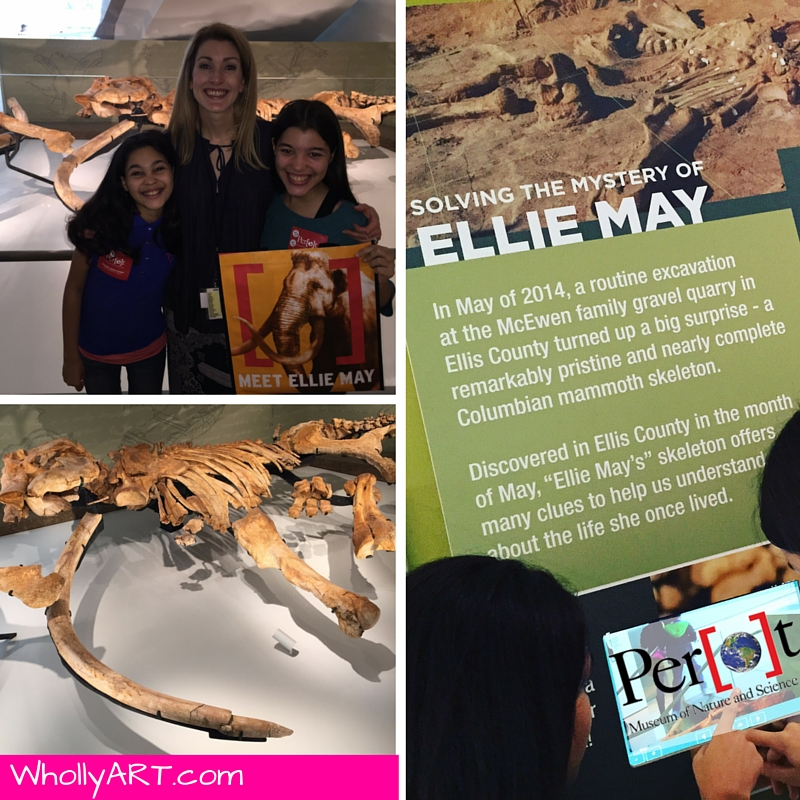 Ellie May Perot Museum of Nature and Science - WhollyART