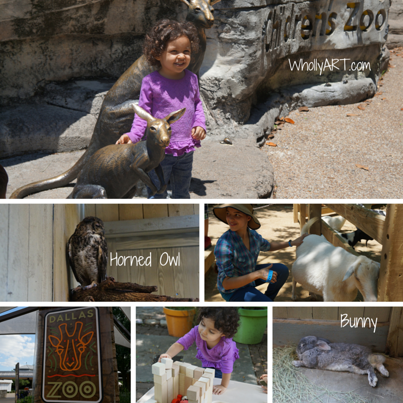 An Amazing Family Adventure At The Dallas Zoo Lacerte Family Children's Zoo