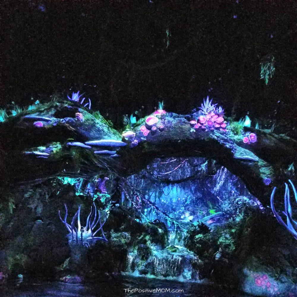 Pandora Na'avi River Journey
